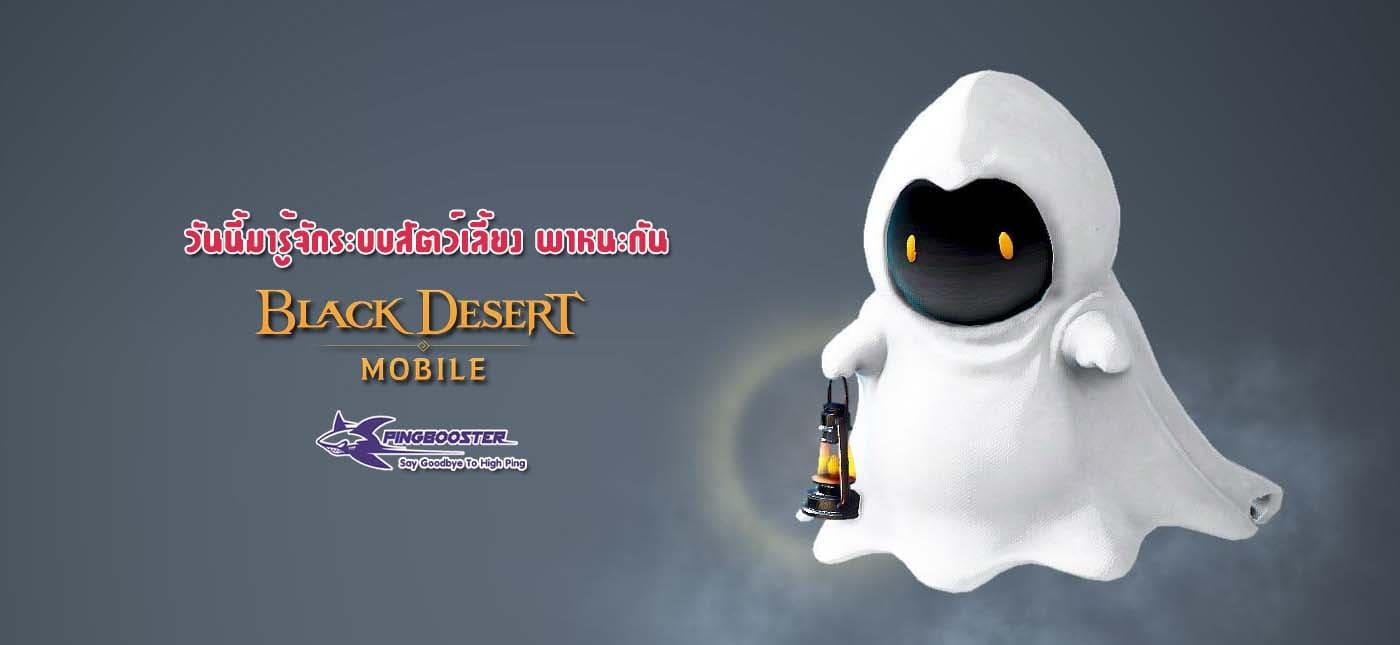 แนะนำระบบสัตว์เลี้ยง พาหนะเกม Black Desert Mobile