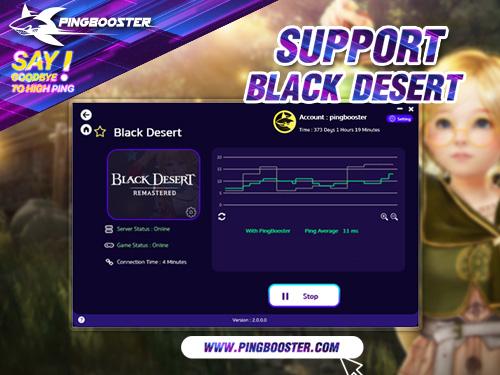 PingBooster VPN Support Black Desert