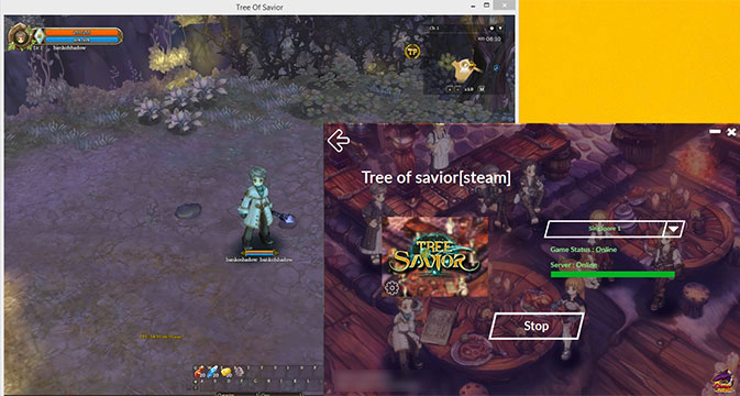 Tree of Savior By PingBooster